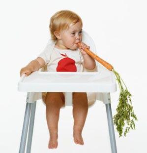 12 правил прикорма