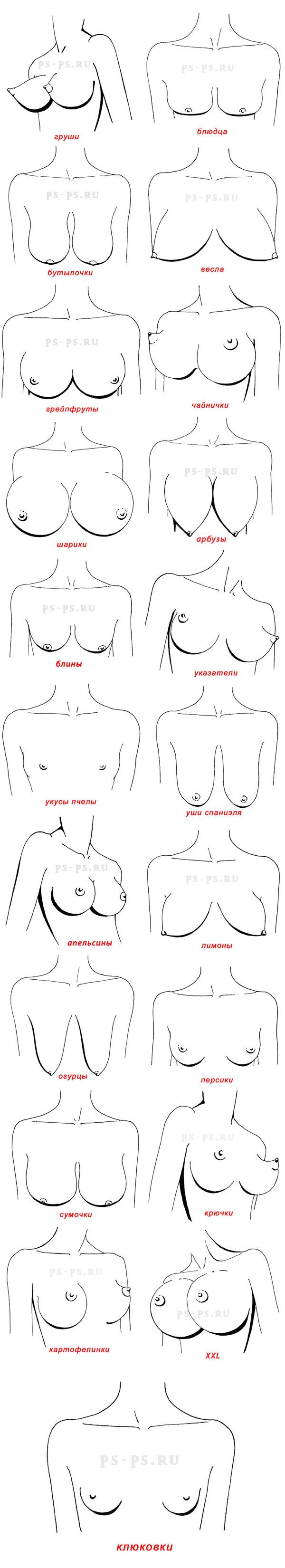 Форма сисек у женщин 18 фотография